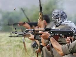 PKK-ya lənət! Min lənət!