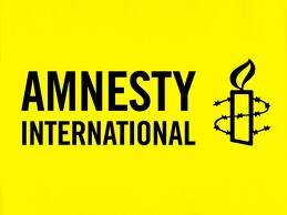 Amnesty International Eynulla Fətullayevi «hökumətyönlü» adlandırdı