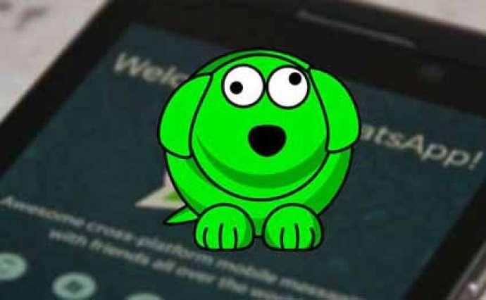 Whatsapp-dan daha bir YENİLİK - VİDEO