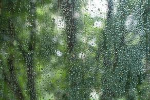 hava yağış