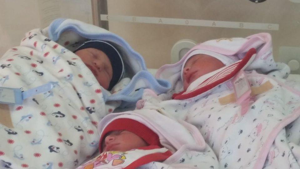 Tədris Cərrahiyyə Klinikasında üçəm dünyaya gəlib - FOTO
