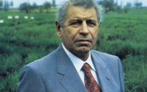 celal eliyev