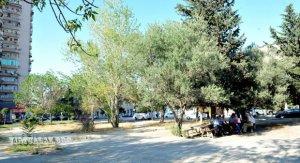 Bakıdakı məşhur Ayna Sultanova parkı satılıb?